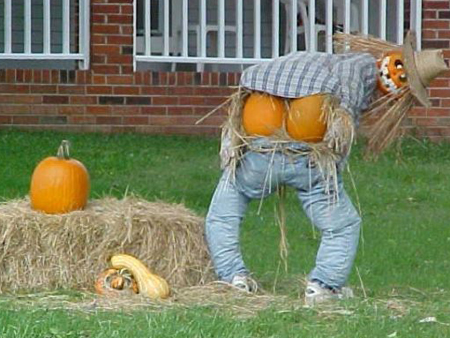 funny_scarecrows_08